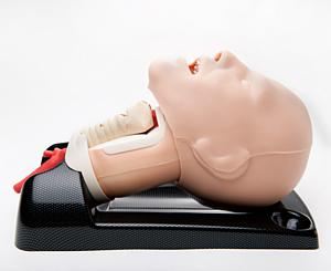 AirSim Advance Crico Airway Manikin