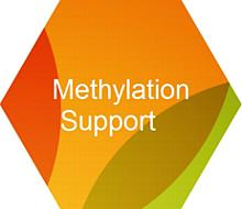Methylation Support