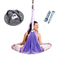 Purple Yoga Trapeze and Ceiling Hooks Bundle