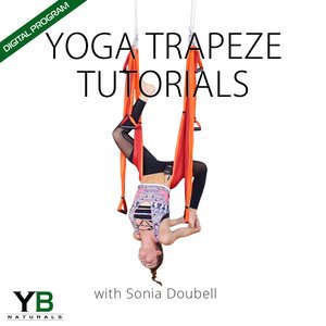 Yoga Trapeze Tutorials - ONLINE PROGRAM