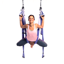 Free Shipping! Yoga Trapeze® - Purple with Free DVD Tutorials