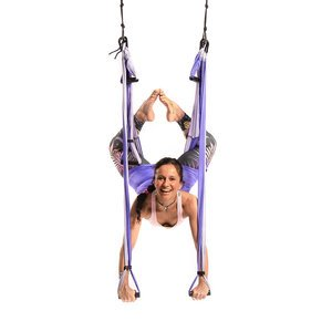 Wholesale Purple Yoga Trapeze Kit - 10 units