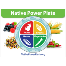 Native American Resources