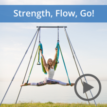 Yoga Trapeze Video Tutorial Set | Strength, Flow, Go! | Level II Series & PDF Pose Chart